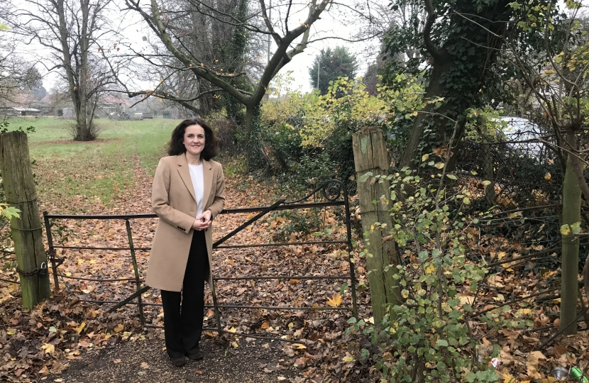 Villiers campaigns to save fields at Whalebones